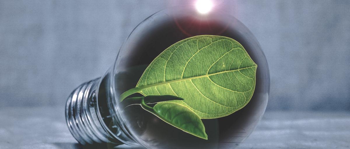 Permalien vers:Les avantages de la certification ISO 50001